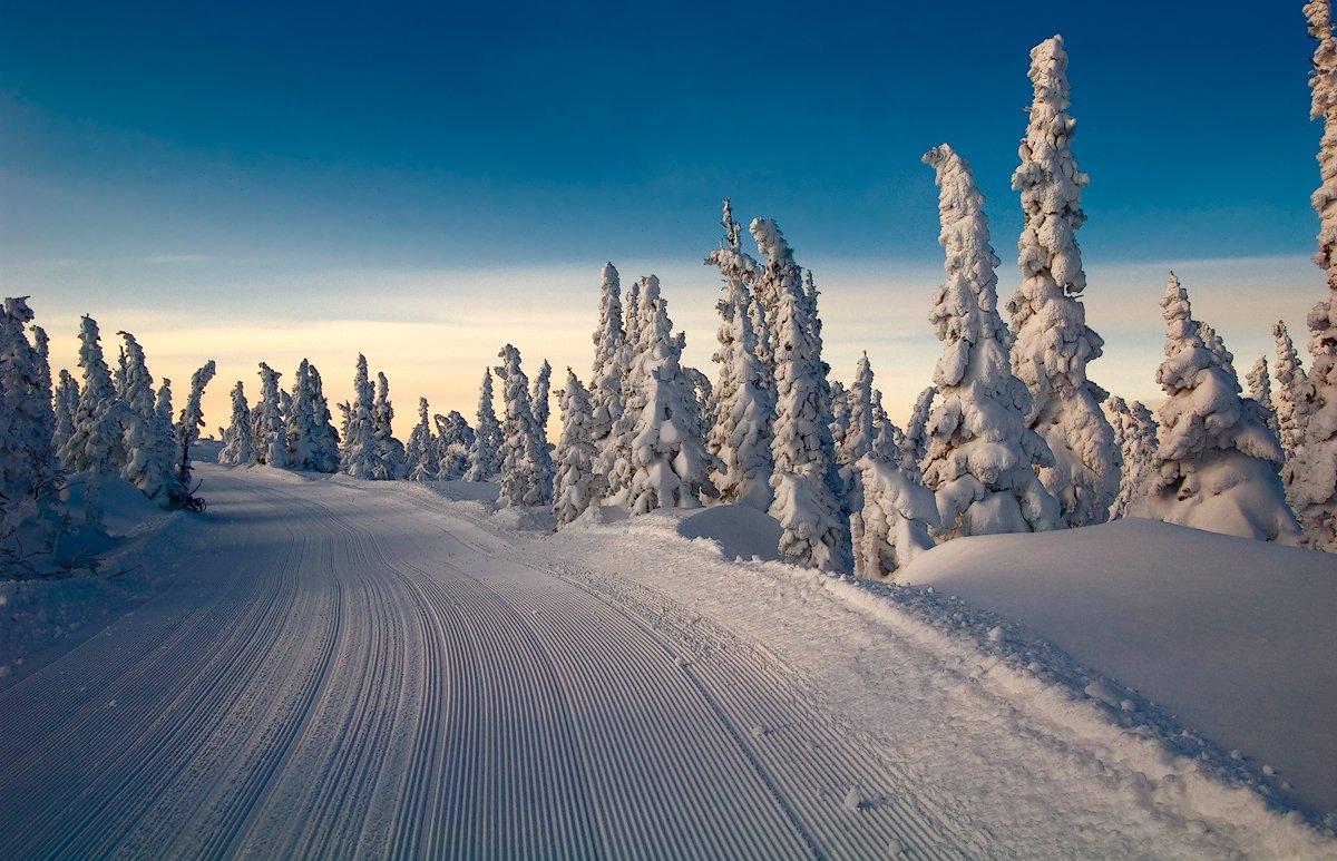 гора зелёная, горная шория, горнолыжный курорт, горные лыжи, зима, пихты, ратрак, ратрачный след, сибирь, снег, сноуборд, шерегеш, Валерий Пешков