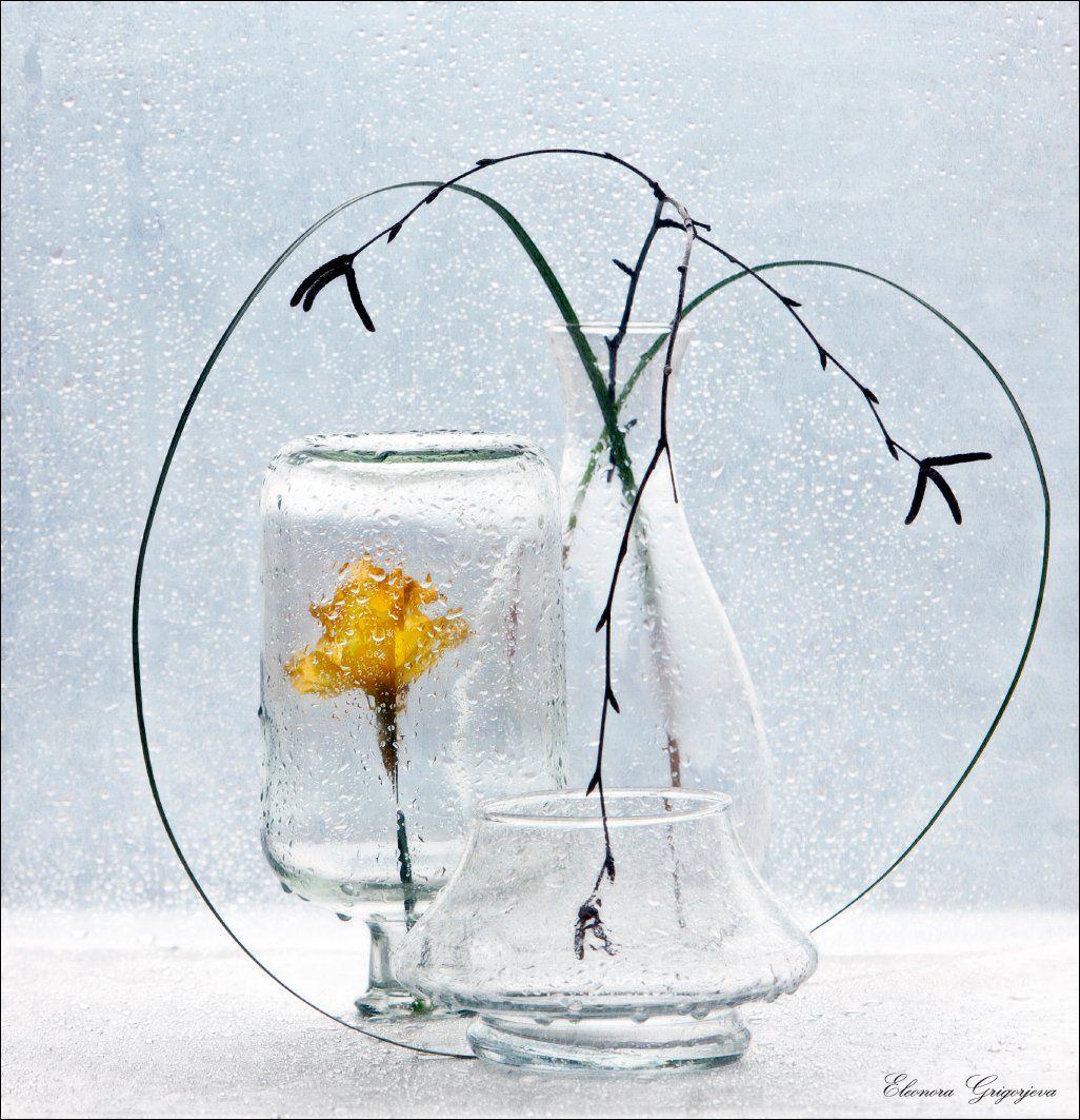 берёза, весна, дождь, нарцисс, натюрморт, стекло, февраль, Eleonora Grigorjeva