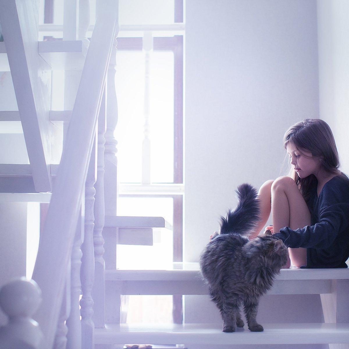 girl, cat, portrait, light, Юлия Карпова