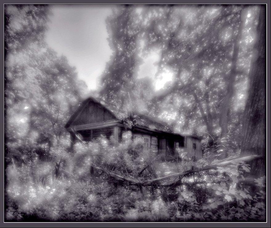 пейзаж, деревня, лес, монокль, панорама, Александр Авилов