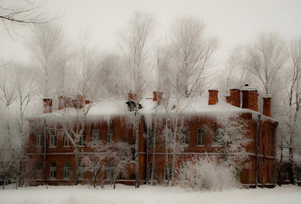 архитектура, город ,  деревья, дома,  зима, конкурс,  памятники, пейзаж, петергоф, петродворец, природа, Евгений Поздняков