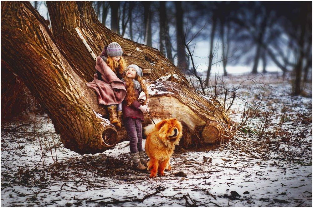 Дети, собаки, лес , Екатерина Лапатей