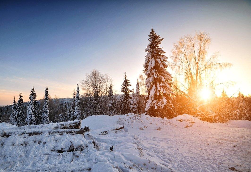 Башкирия, Белорецкий район, Горы, Снег, Солнце, Сосны, Утро, Алексей Верзун