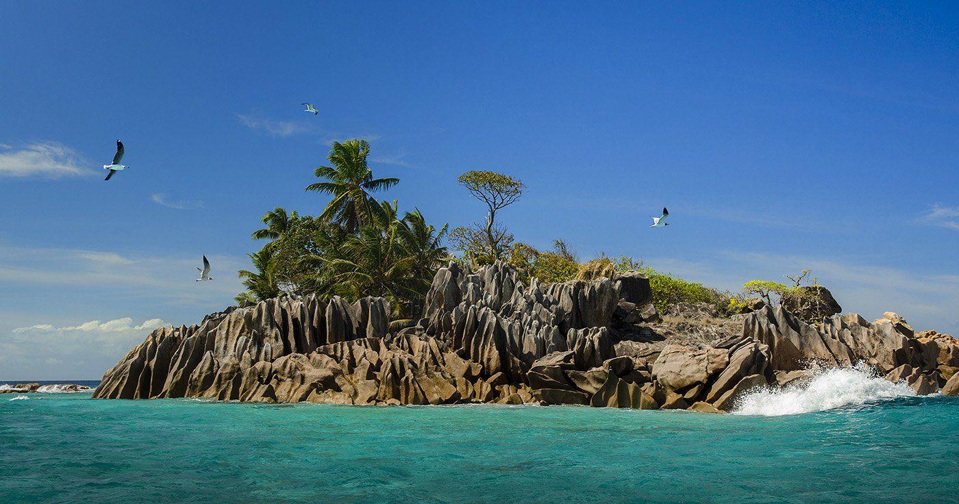 остров , сейшелы, синева, скалы, чайки, море, экзотика , Марина Мудрова