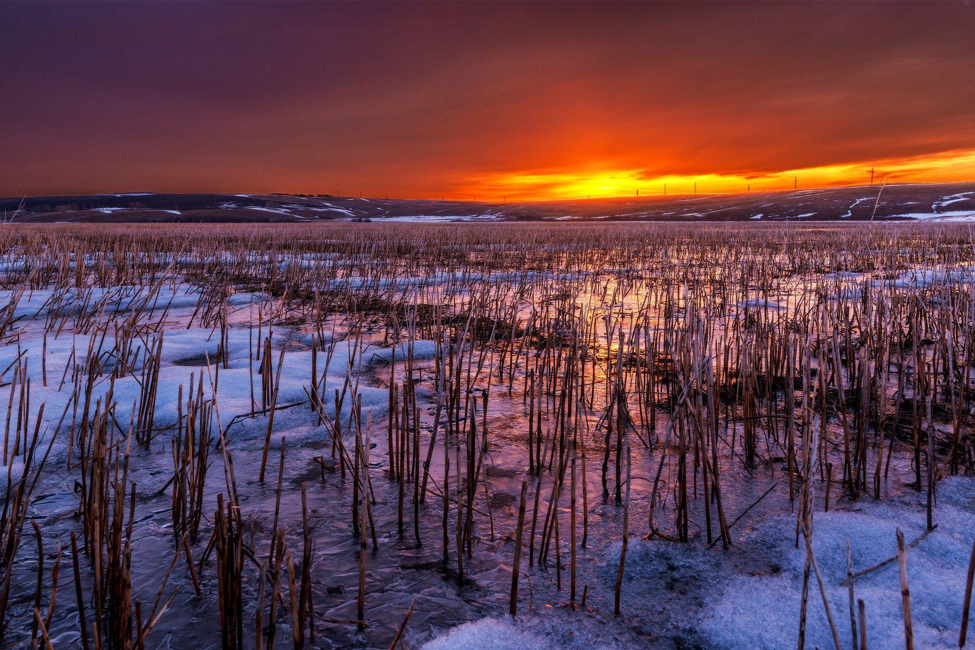 алтай, весна, восход, заря, тучи, пасмурно, свет, оранжевый, поле, лед, отражение, Павел Силиненко