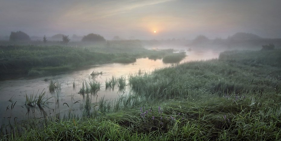 пейзаж, рассвет, туман, утро, Керженец, река, Александр Бархатов