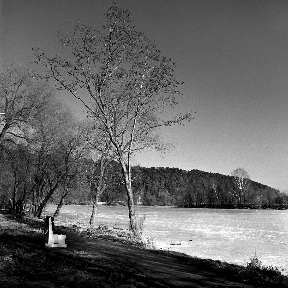 Весна., Парк., Река., Александр Резников