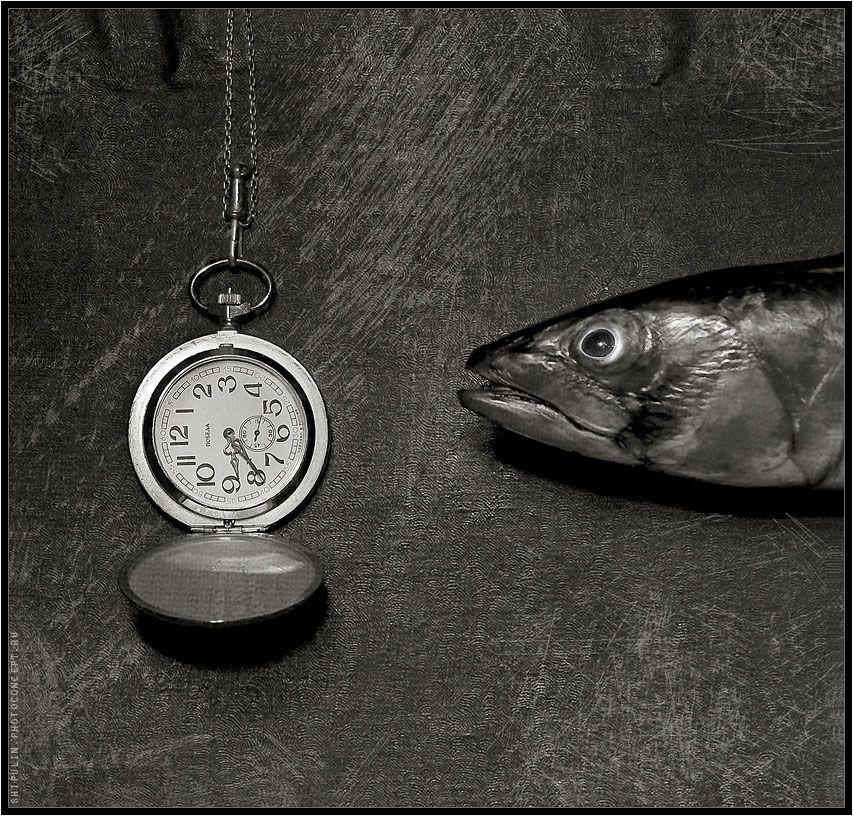 рыба,часы,рыбы,натюрморт,сюр,сюрреализм,владимир,шипулин, Vladim_Shipulin