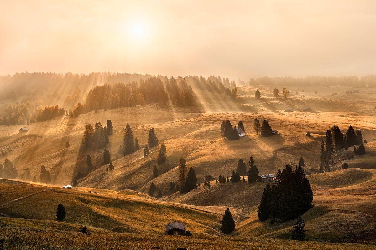 Dolomites, Italy, Alps, autumn, autumn landscape, beautiful place, travel, rays, meadows, sun, sunrise, tree, fog, mist, Alpe di Siusi, Tomáš Morkes