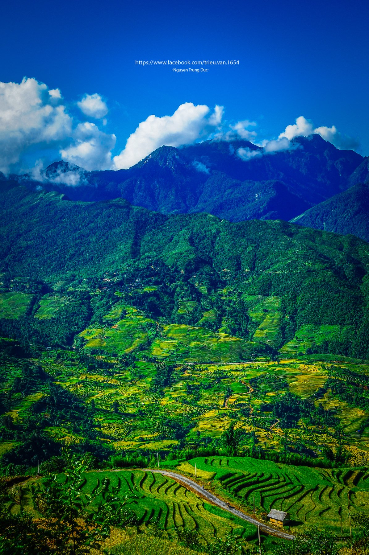 Blue, Clouds, Color, D300s, Field, House, Landscape, Mountains, Nature, Nikon, Northwest of Vietnam, Rice, Season, Sky, Small house, South east asia, Summer, Trungducphoto, Vietnam, Waves, Way, Yellow, Nguyen Trung Duc