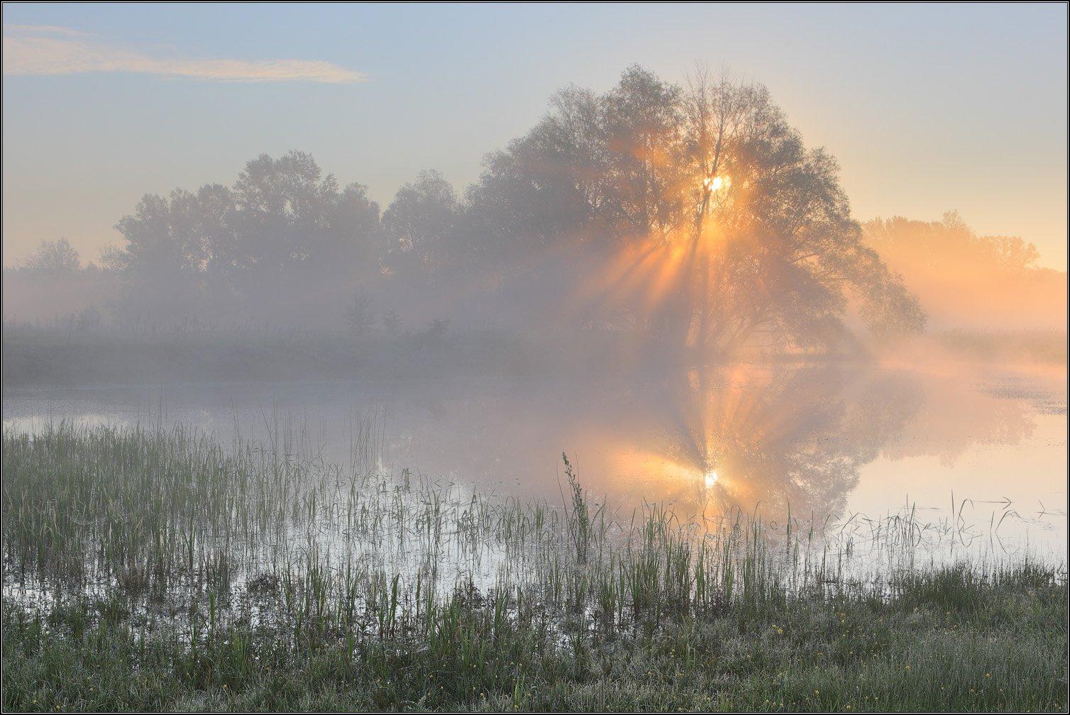 Солнце Река Туман, Михаил (mgk)