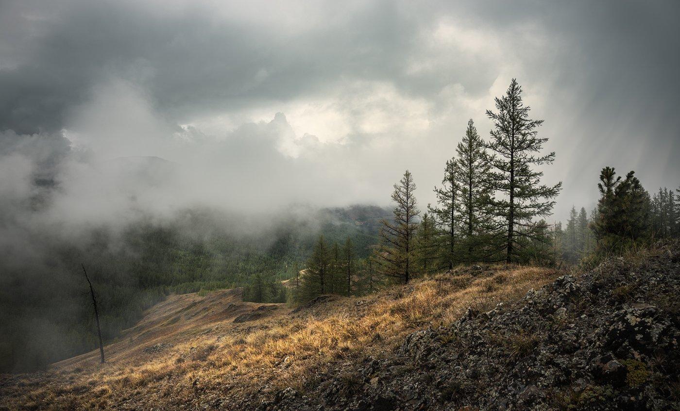 пейзаж, landscape, панорама, panorama, природа,nature, горы, mountains, plateau, плато, altai, алтай, siberia, сибирь, mist, fog, туман, дождь, rain, sky, небо, cloudy, clouds, облака, foul weather, непогода, big, большой, красивая, beautiful, высокие, hi, Дмитрий Антипов