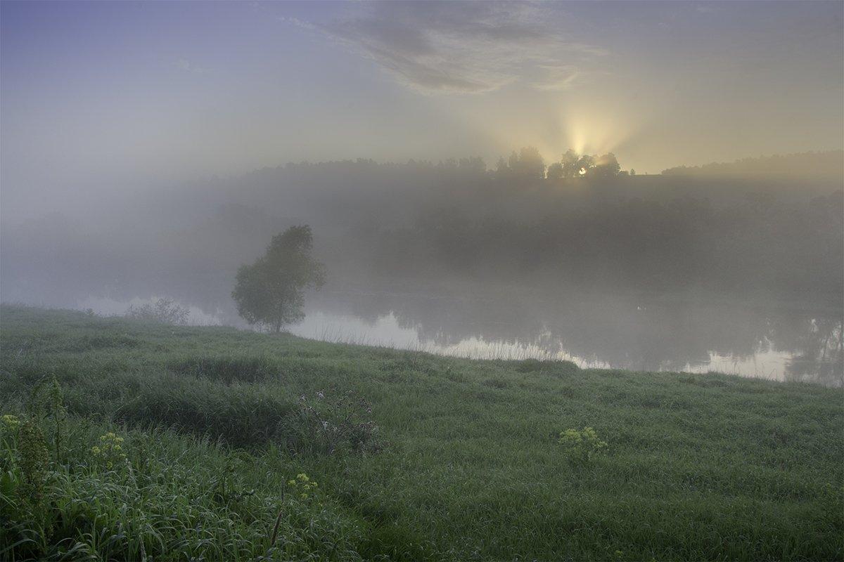 D3100, Nikon, Ока, Пейзаж, Природа, Рассвет, Река, Россия, Тульская область, Туман, Денис Щербак