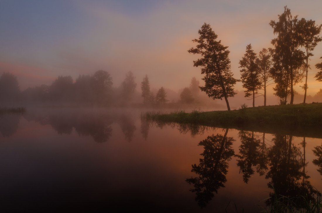 Dawn, Lake, Mist, Reflection, Summer, Trees, Justinas Kondrotas