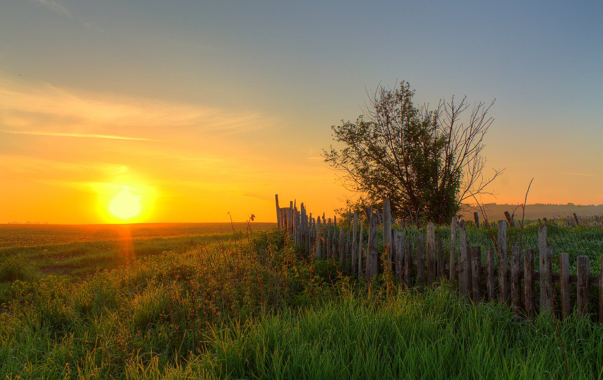 забор, лето, небо, облака, пейзаж, природа, рассвет, свет, солнце, трава, Артём Колупахин