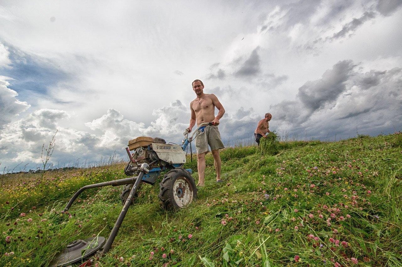 лето, сено, люди, небо, трава, поле, Дулов Валерий