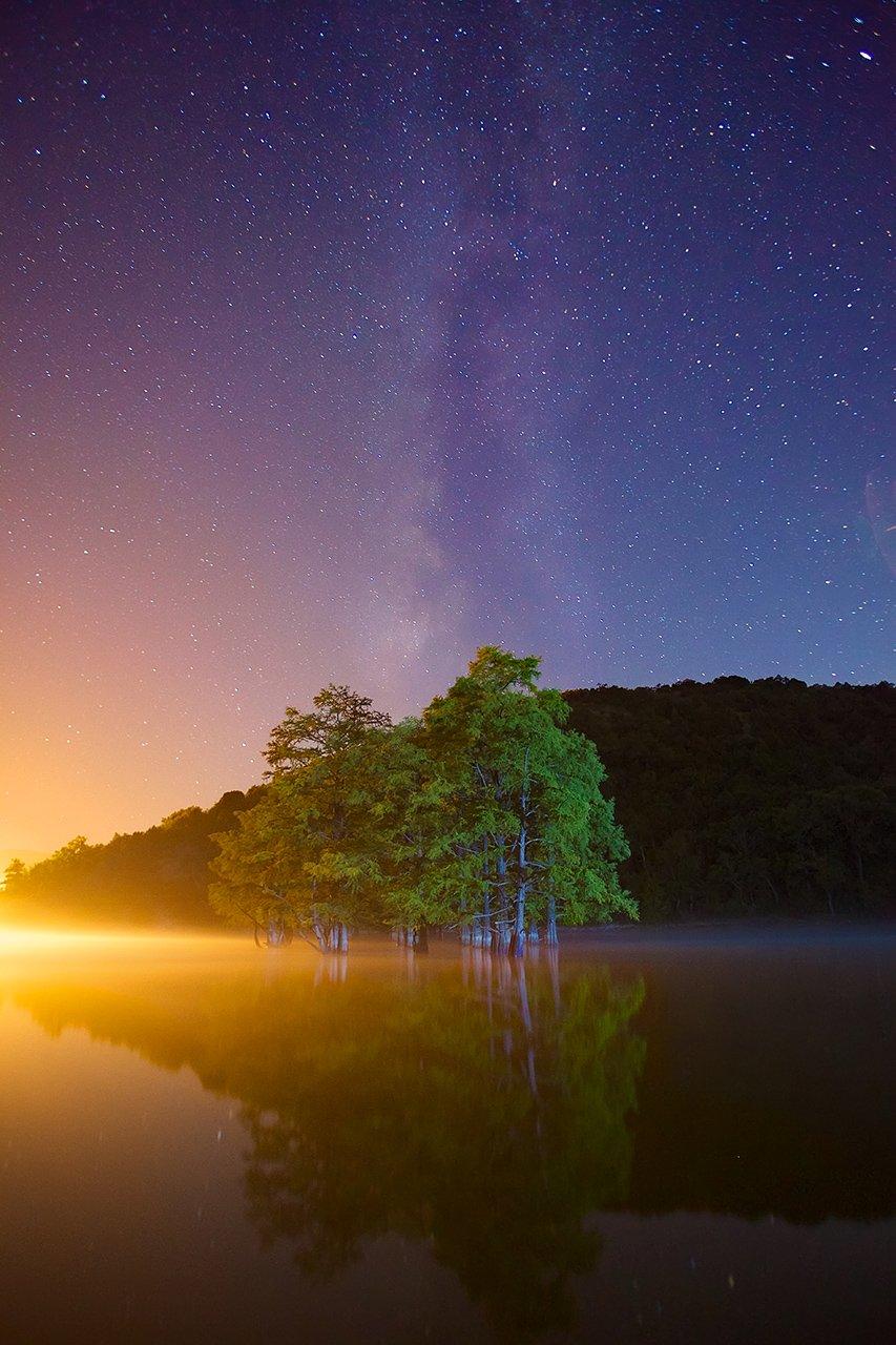 сукко,болотный кипарис,роща,ночь,млечный путь,звезды, Никифоров Егор