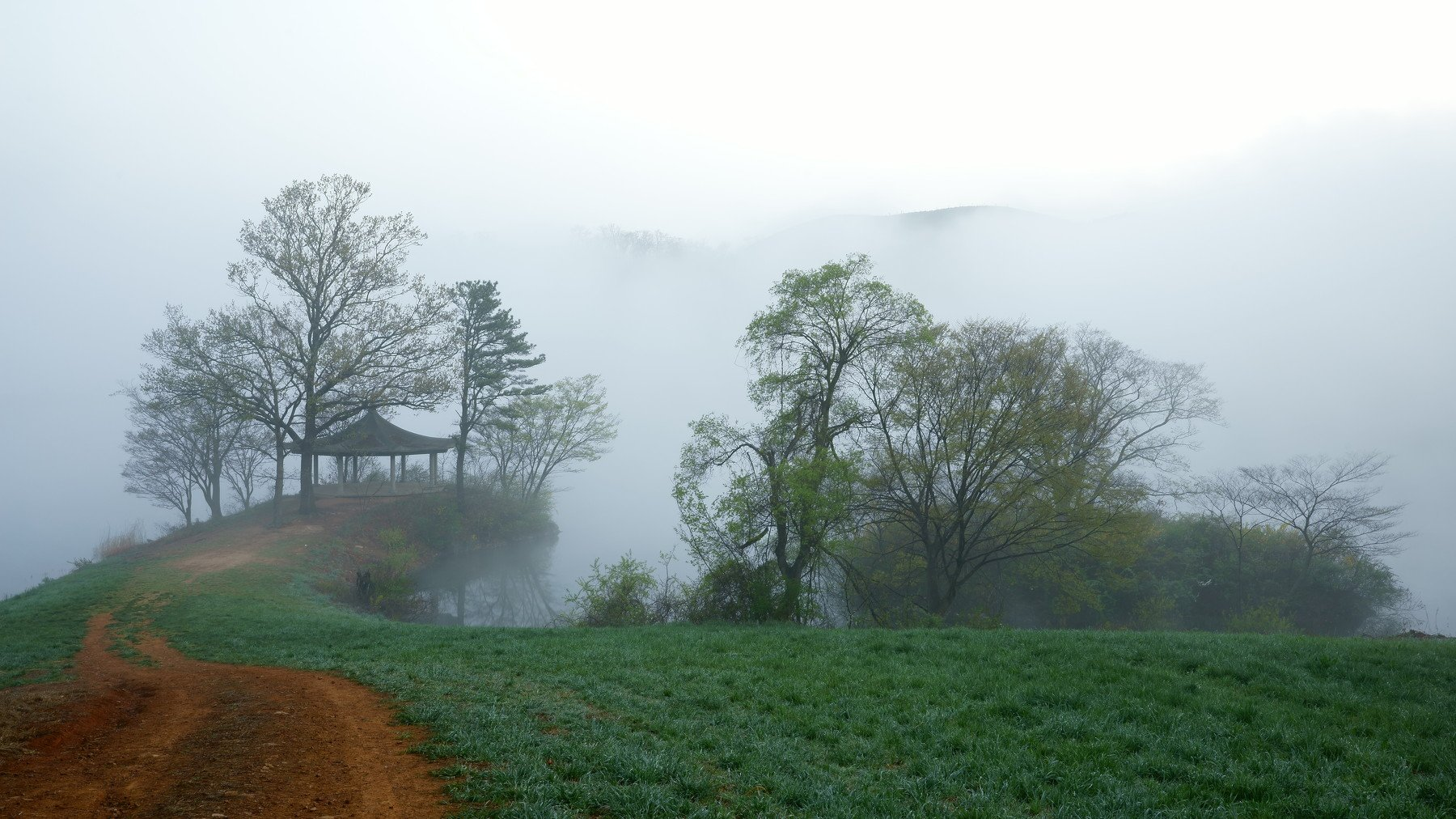 asia, south korea, korea, landscape, reservoir, fog, morning, nature, pavilion, tree, green, grass, mountain, path, springtime, , Shin