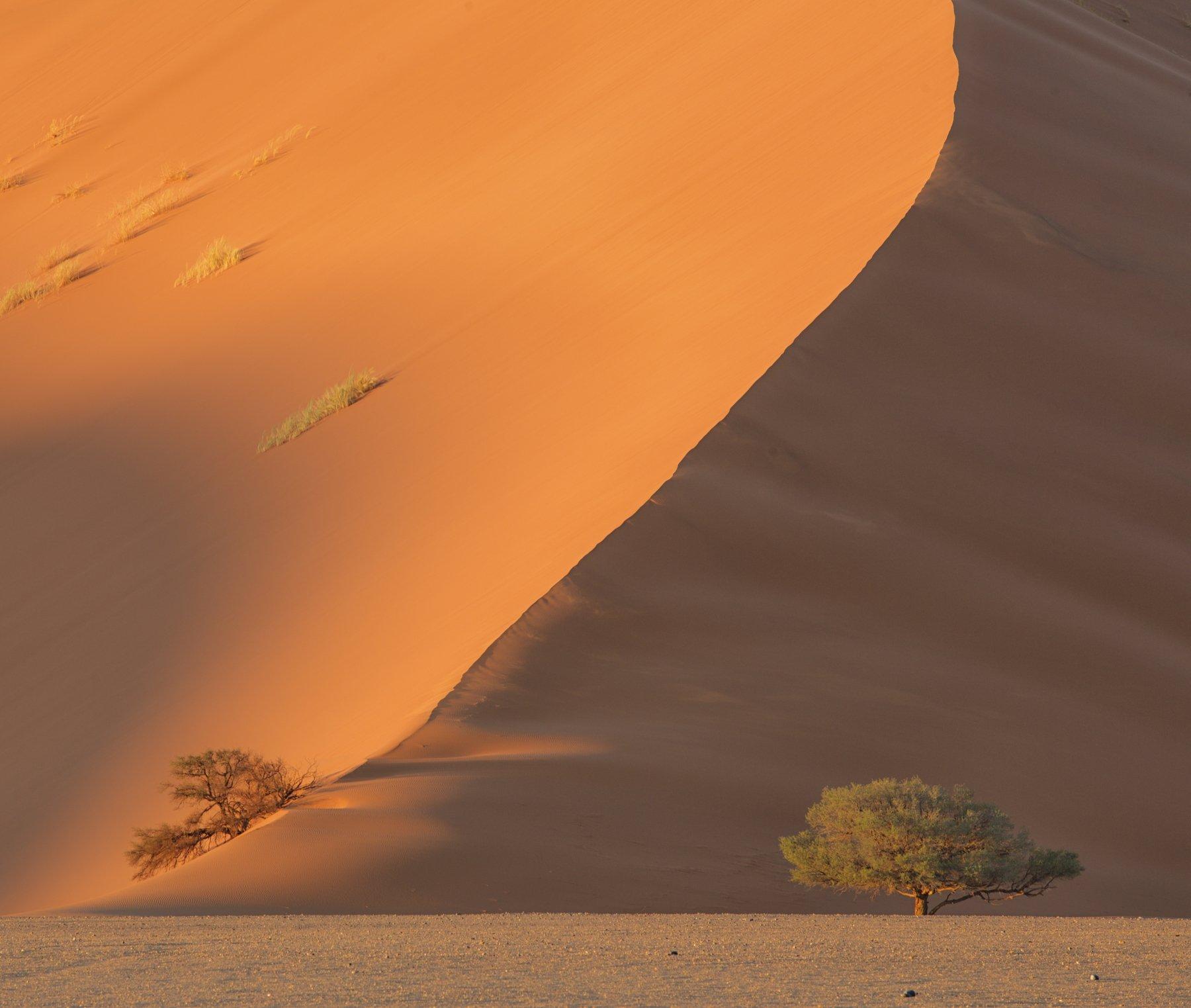 namibia, намибия, #loveafrica, sossusvlei, dunesnamib-naukluft national park, sesriem, mc, Маргарита Чернилова