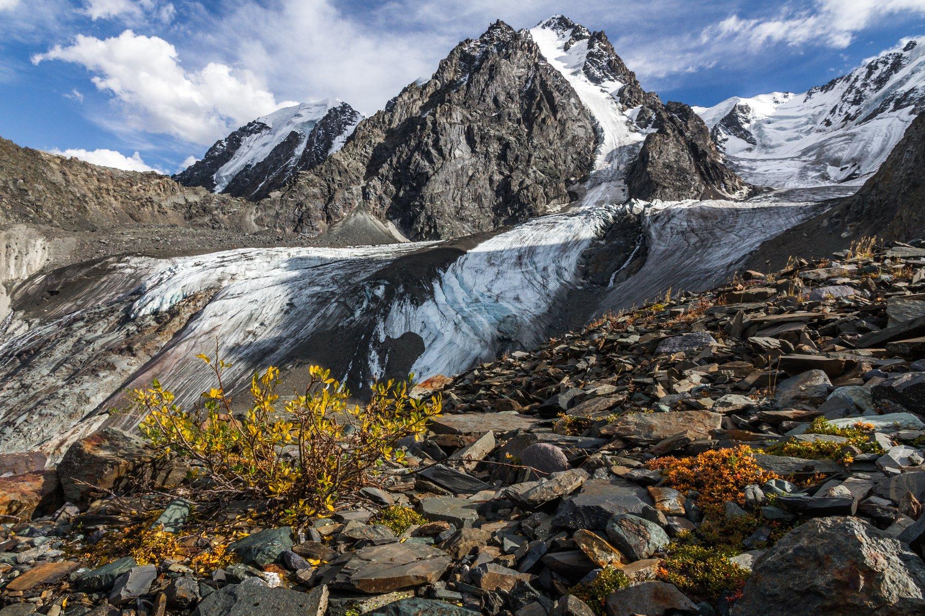 Алтай, Ледник, Зелинского, Шавлинские озера, Россия, Слащилина Нина