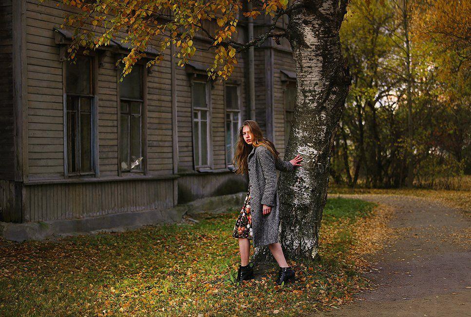 Девушка, портрет, жанр, кот, красивая, осень, листья, цвет, свет, арт, люди, старый дом, кошка, Постонен Екатерина