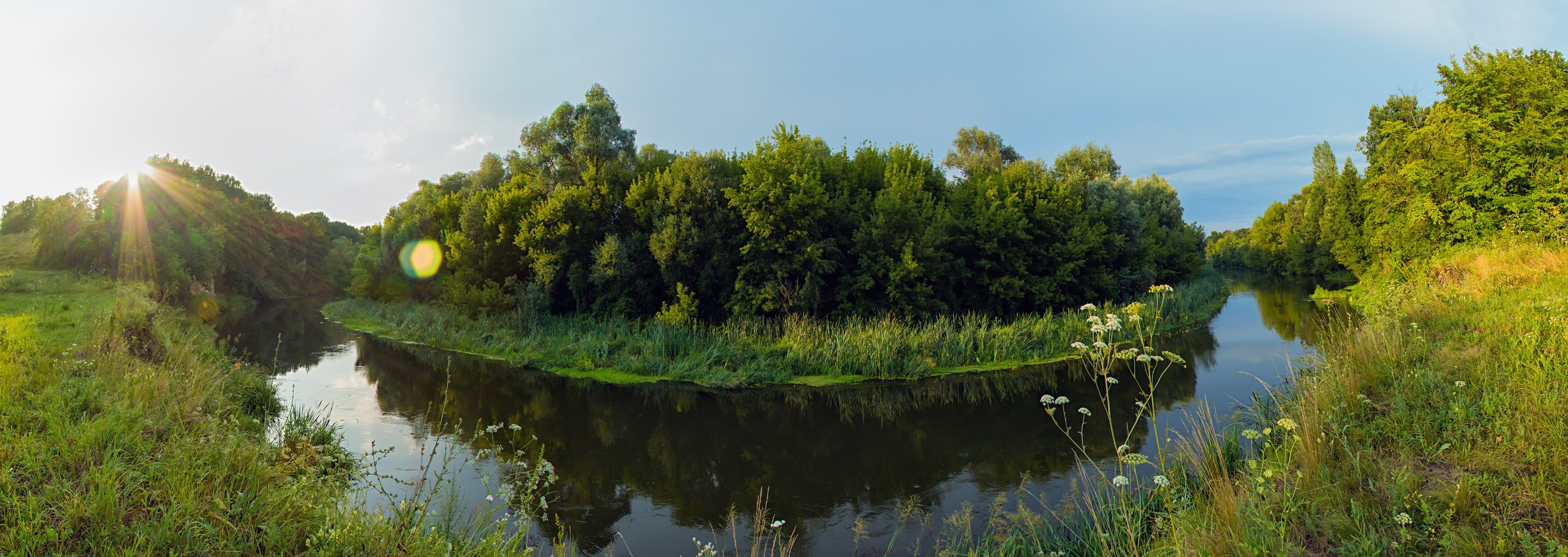 Вода, Деревья, Листва, Небо, Пейзаж, Река, Солнце, Трава, Котов Юрий