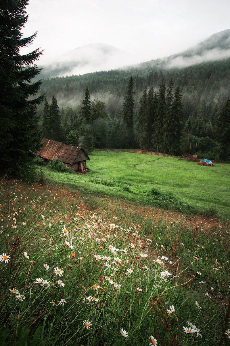 canon, canon70d, landscapes, пейзаж, карпаты, небо, цветы, Дмитрий Шеремет