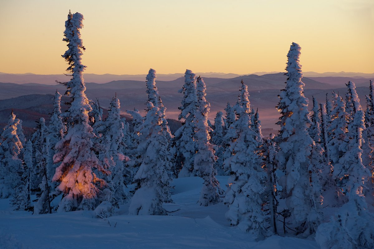 Вечер, Горная шория, Зима, Мороз, Пихты, Сибирь, Шерегеш, Валерий Пешков