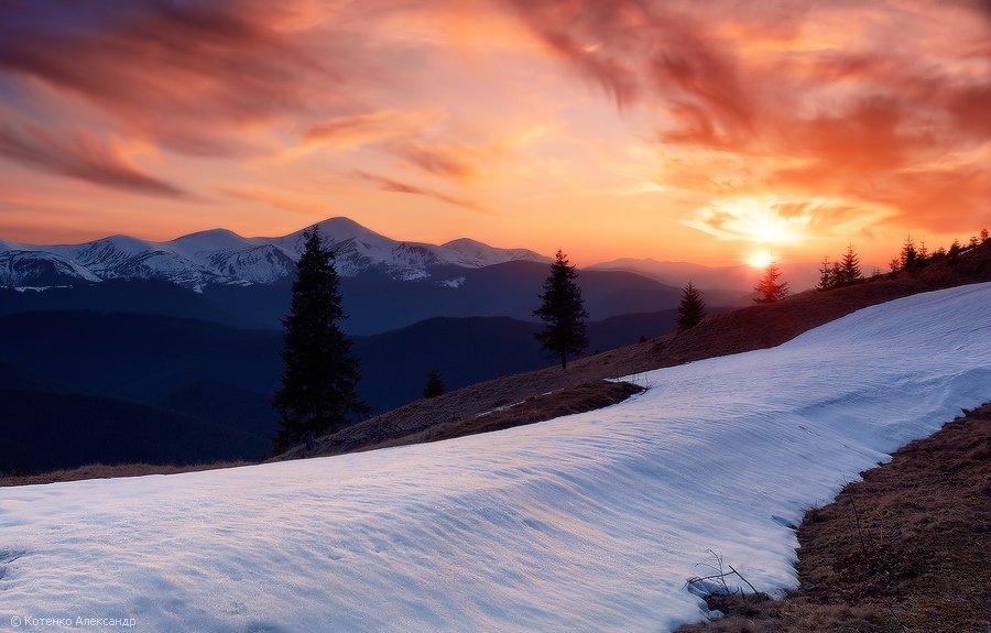 горы, карпаты, котенко, весна, черногора, снег, закат, Котенко Александр