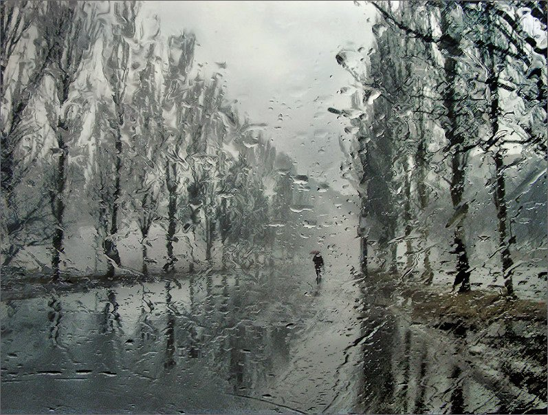 , Валерий Бредюк