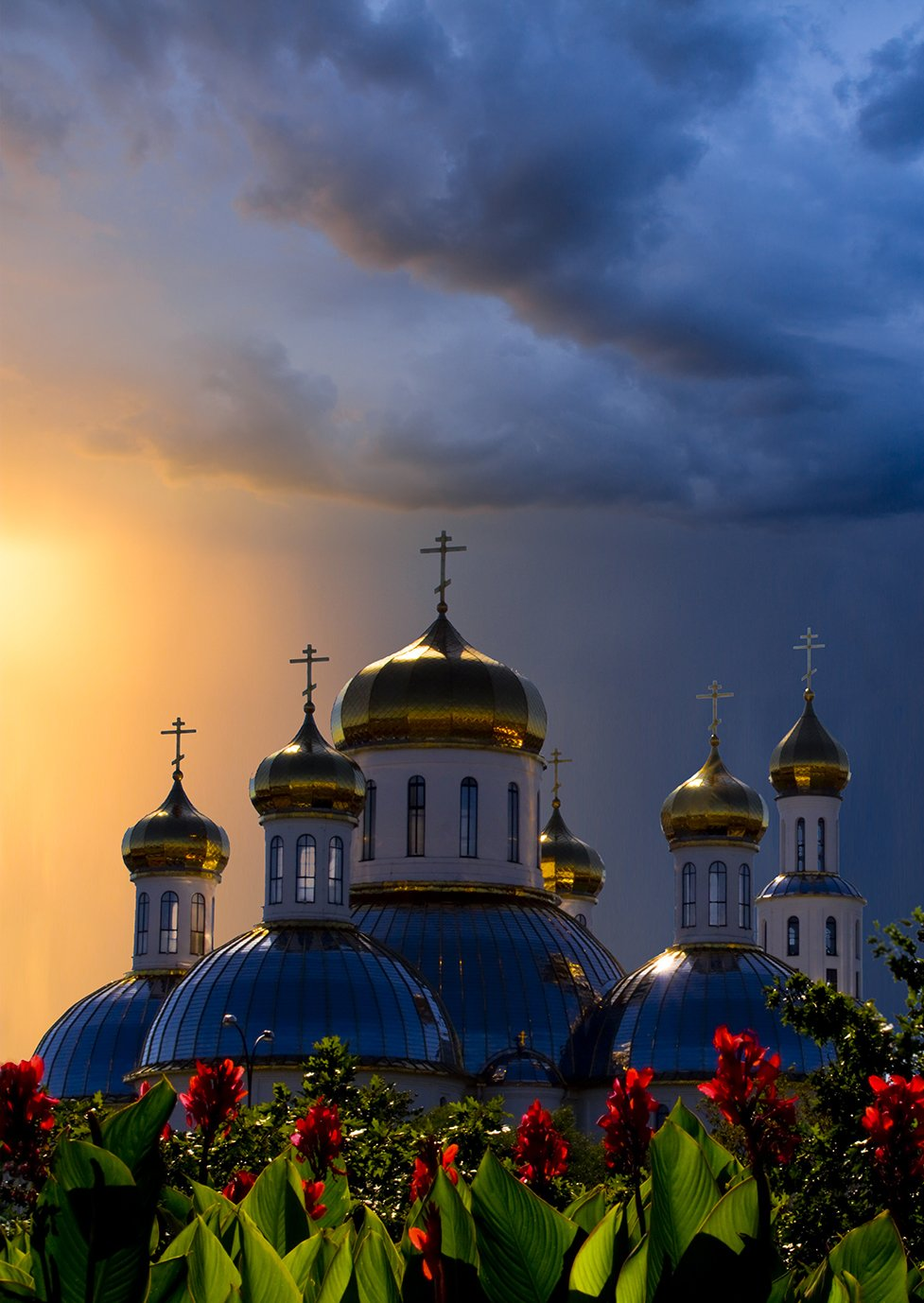 собор, церковь, цветы, закат, Фото Брест
