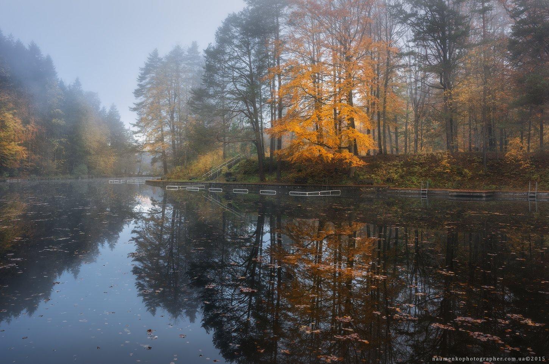 германия, бавария, фюссен, осень, город, пейзаж, парк, путешествия, желтый, фон, прекрасный, красота, яркий, цвет, разноцветный, осень, листва, лес, золотой, трава, зеленый, озеро, лист, листья, национальный, природный, природа, октябрь, оранжевый, пруд, , Александр Науменко
