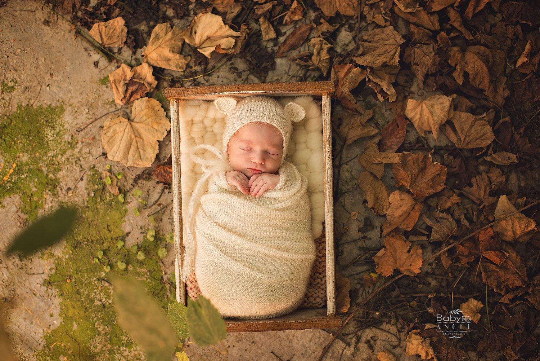 осень, новорожденный, теплые оттенки, листья, виноград,мишка, Анастасия Нагорная