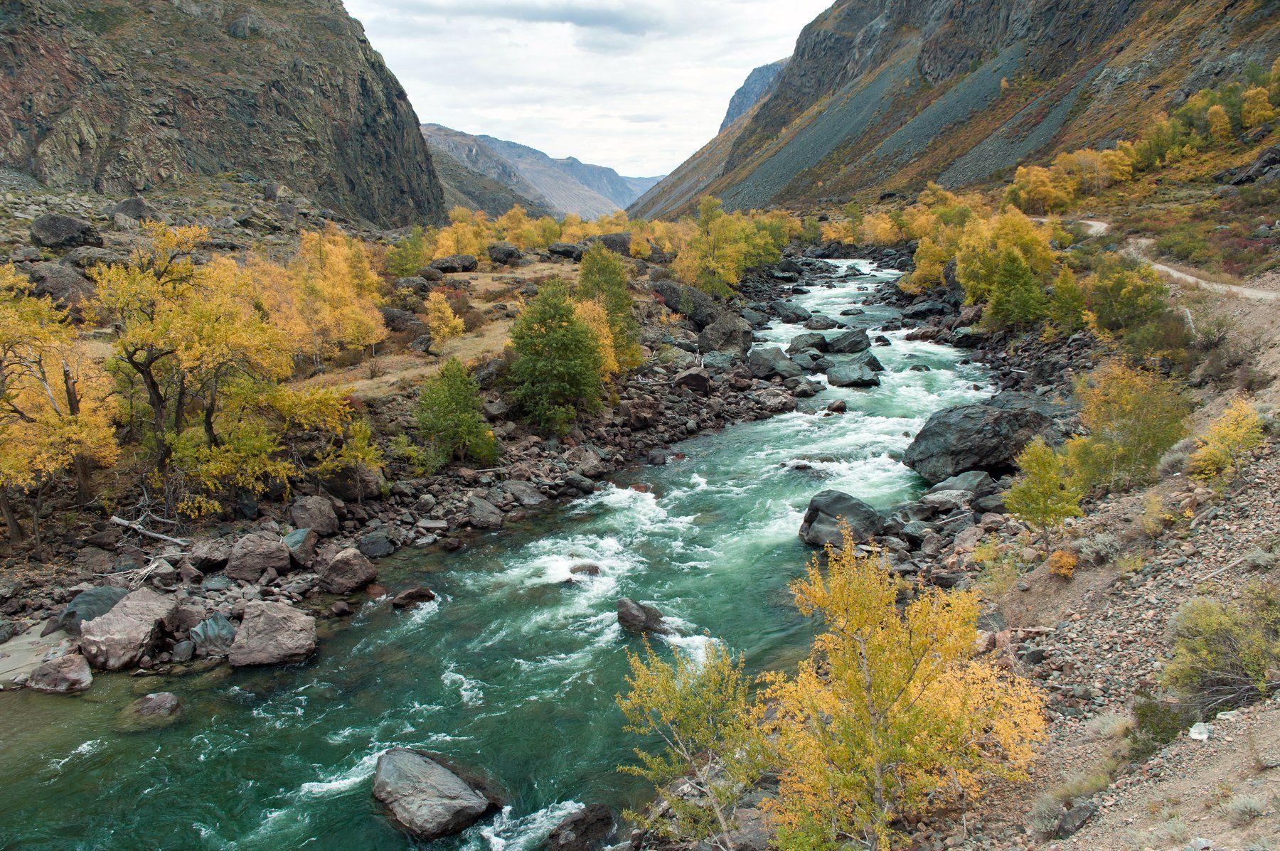 Autumn, Горный алтай, Горы, Изумрудная река, Осень, Река, Максим Блинов