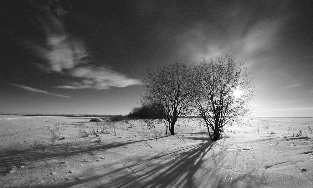 Зима, Снег, Чб, Анастасия Огородова