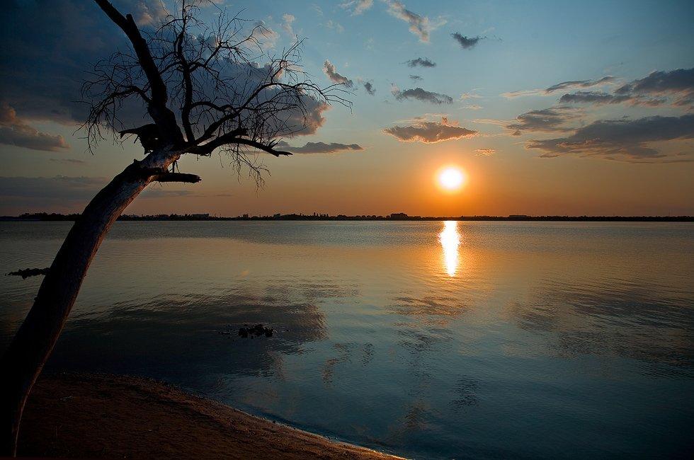 дерево, озеро, мойнаки, закат, tolyan139