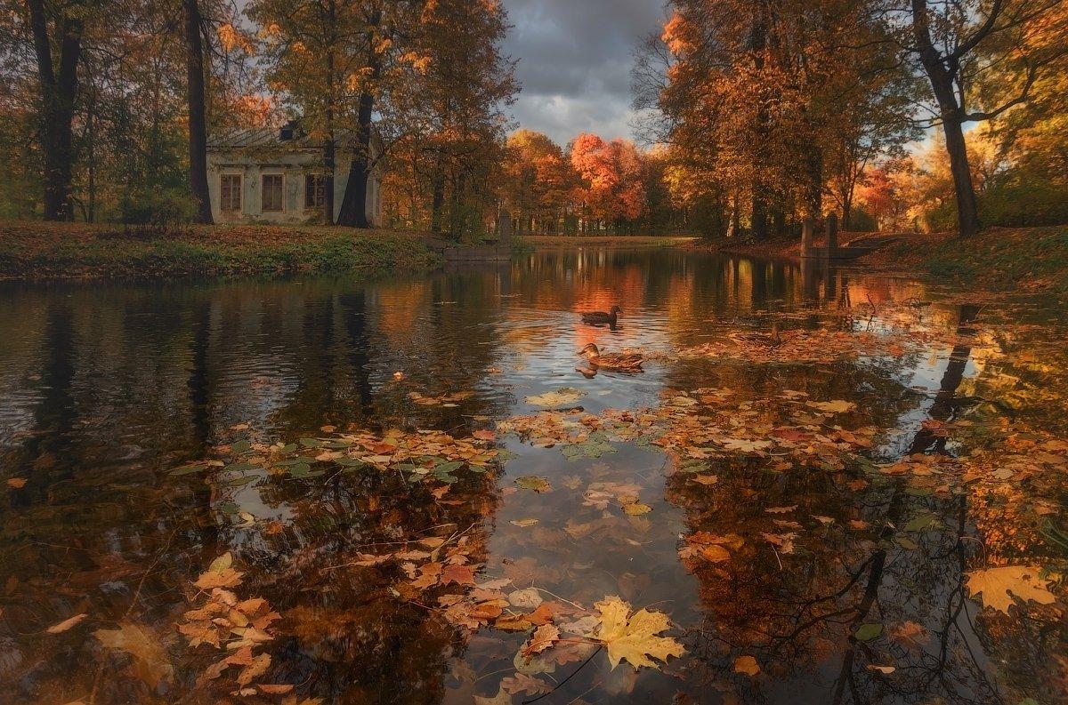 Осенняя шкатулка... Таня She (Aiya)