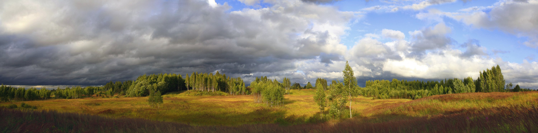 лето, поле , тучи, Свистков Александр