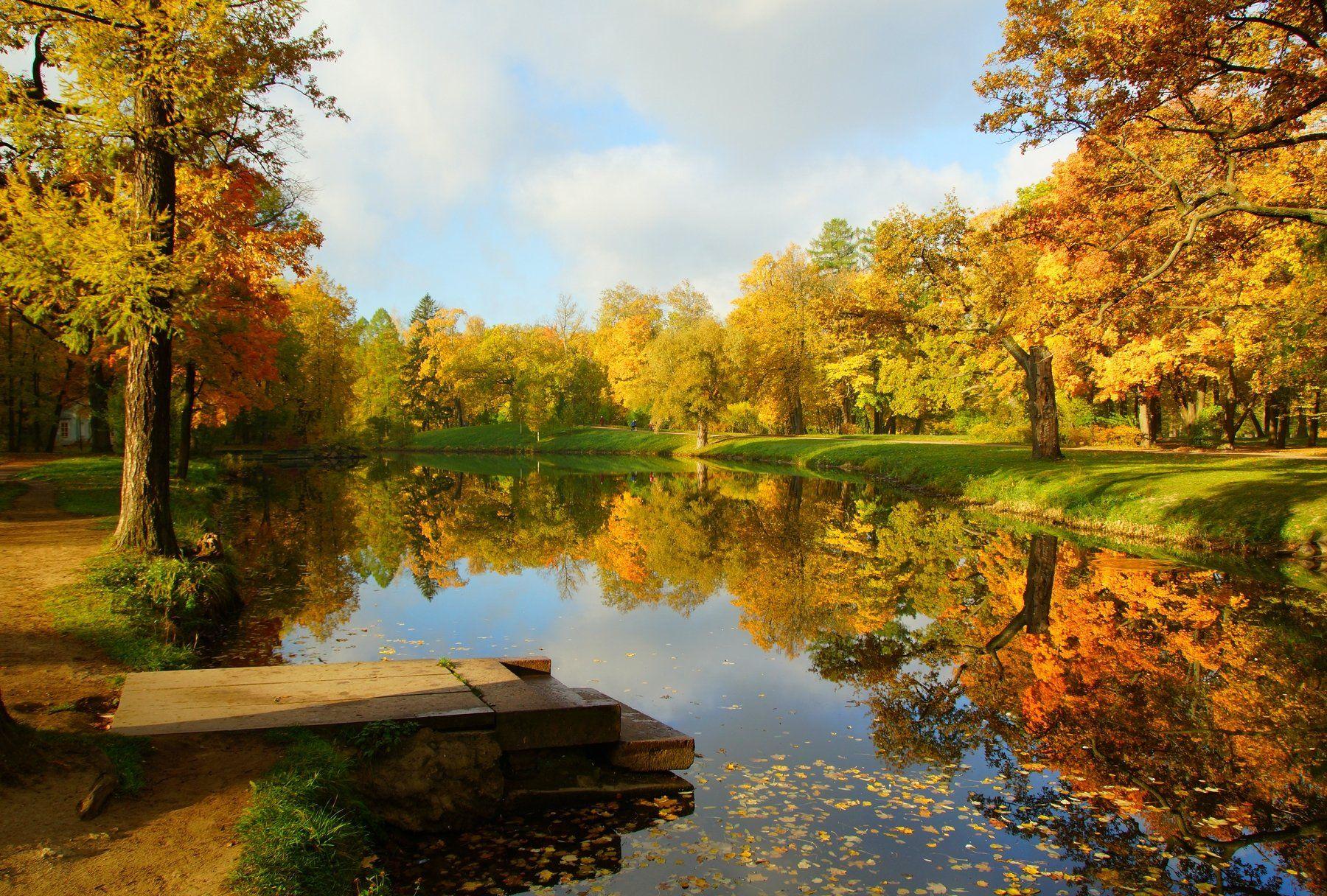 autumn, nature, pond, landscape, sky, Сергей Андреевич