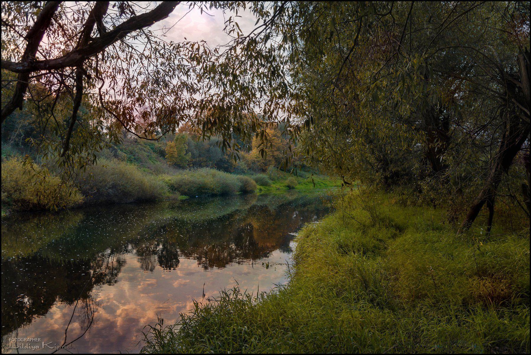 пейзаж, река, вечер, отражение, Лидия Киприч