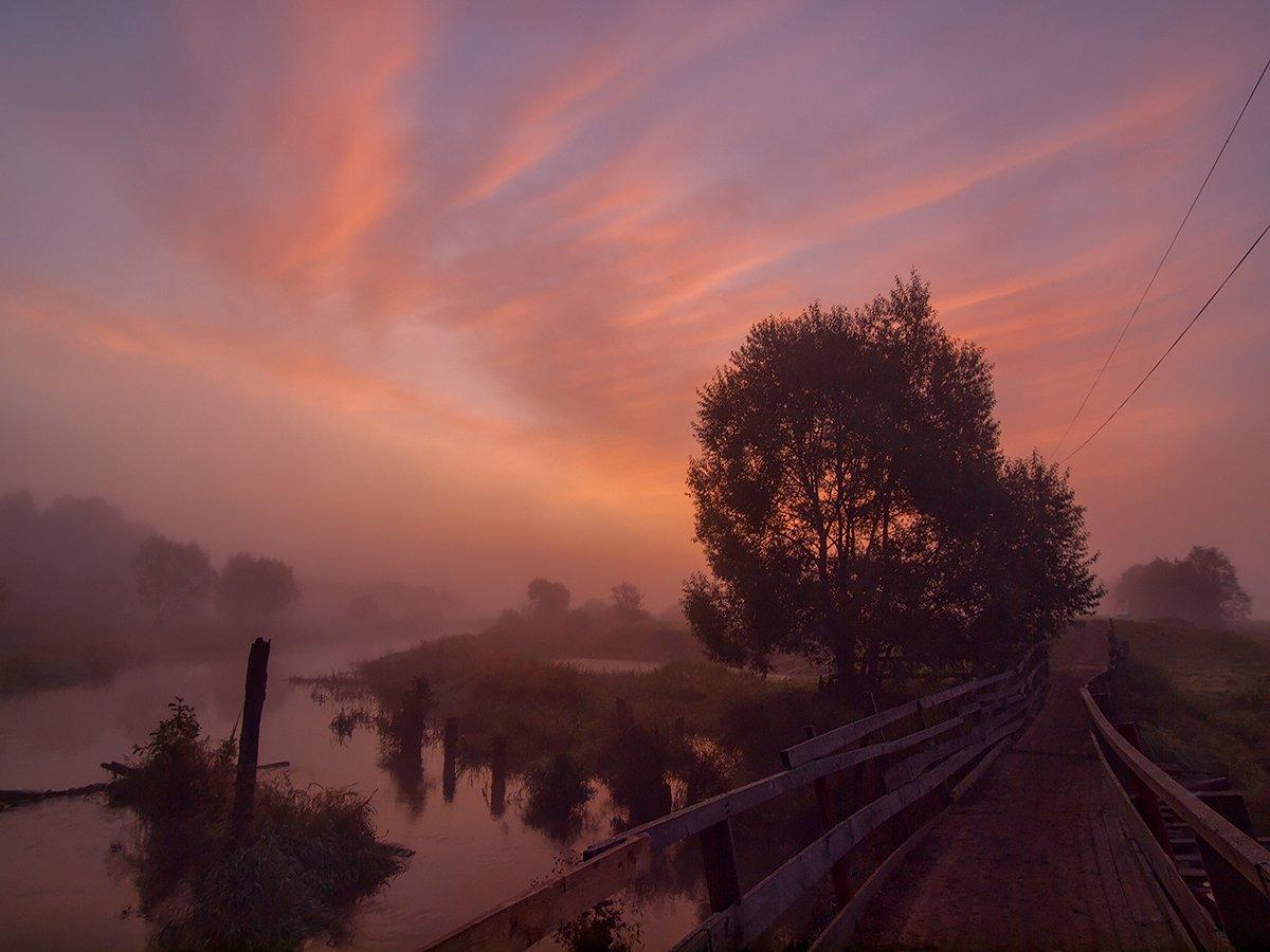 утро, восход, туман, река, пейзаж, небо, Владимир Перепечаев