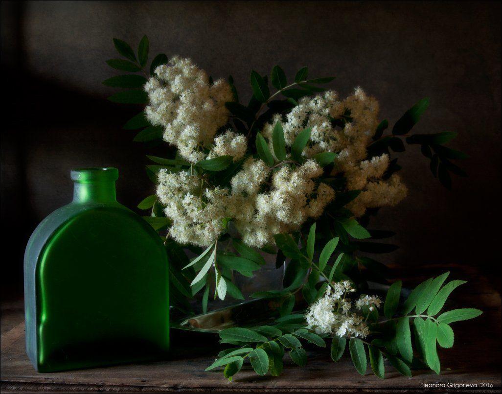рябина, зелёный, белый, стекло, натюрморт, Eleonora Grigorjeva