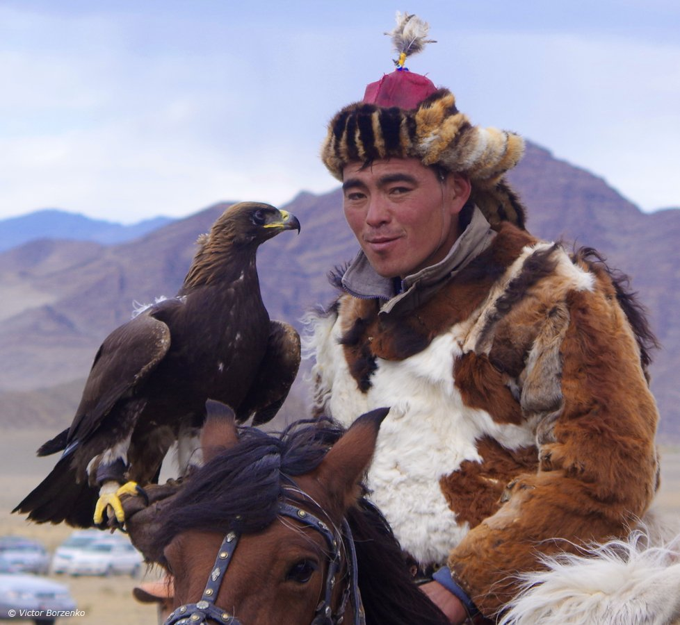 беркут, беркутчи, монголия, орел, охотник, Виктор Борзенко