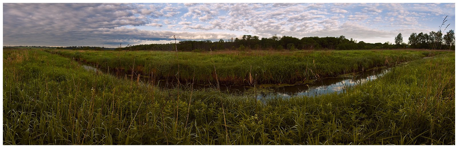 природа, пейзаж, утро, небо, трава, лес, реку, Oleg Dmitriev