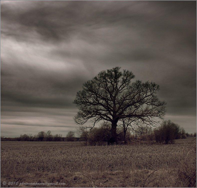 пейзаж, pilgrim, инфракрасный, infrared, Pilgrim