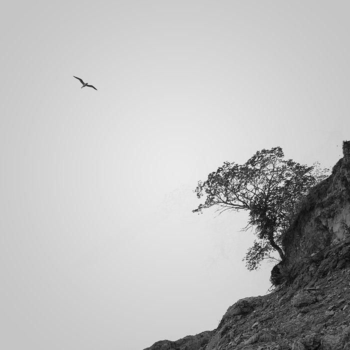 , misteria|shot