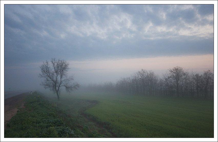туман, утро, крым, Катя Ясная
