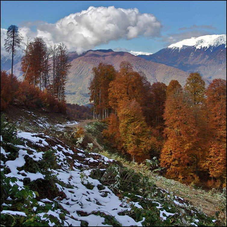 горы, Тарасов Алексей