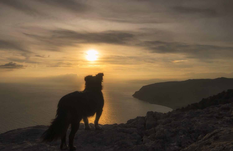 крым, море, горы, свет, закат, рассвет, природа, осень, Пеккер Сергей