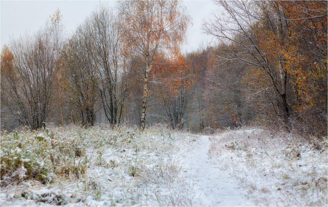 утро, осень, снег,, Сергей Шабуневич